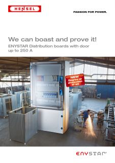 ENYSTAR Distribution boards with door up to 250 A